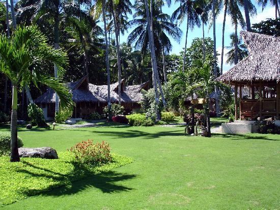 Dauin, Filipinas: Landscaped grounds & cottages