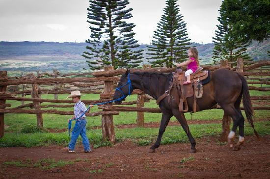The Stables at Koele: PONY RIDES FOR CHILDREN