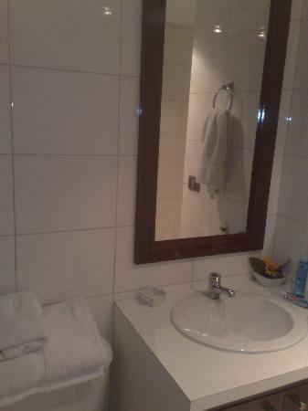 Santiago Suite Apartment: bathroom