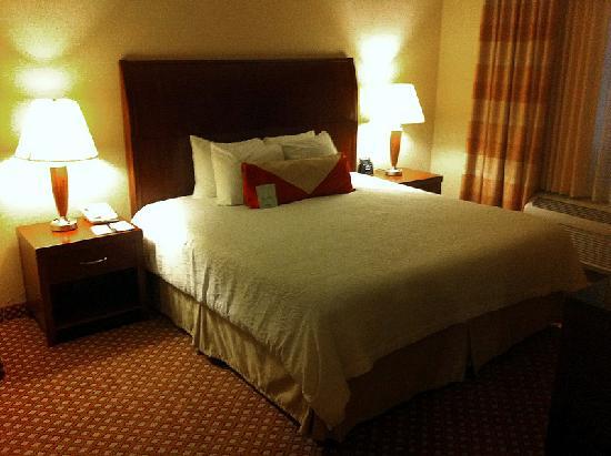 Hilton Garden Inn Albuquerque Uptown: King-size bed