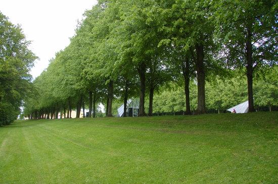 Photo of Park Sondermarken at Roskildevej 1, Frederiksberg 2000, Denmark