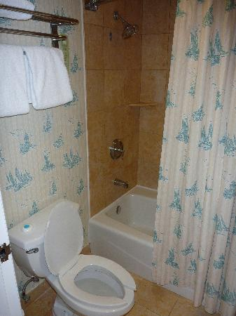 Disney's Beach Club Resort: bathroom