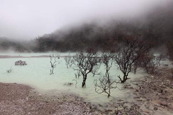 Bandung, Ciwidey, Kawah Putih (White Crater). Pict's takem bu Helmut S.