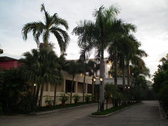 Hacienda de Palmeras: Hacienda Palmeras entry roadway