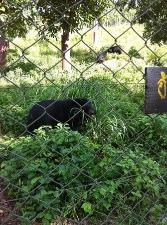 Mae Hong Son Zoo