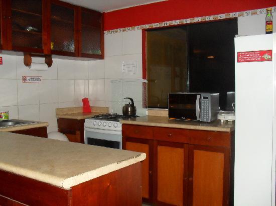 Flying Dog Hostel B&B: A kitchen outside my room