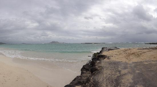 Kailua Beach Park : Kailua B.P