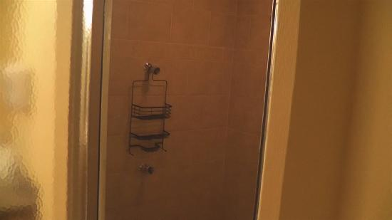 ริปลีย์, เวสต์เวอร์จิเนีย: 7 head shower in suite