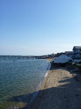 Dyer's Beach House: View from deck