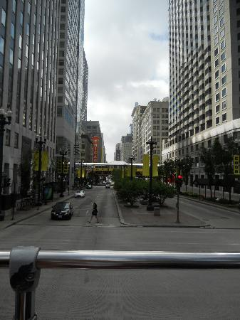 Chicago Trolley & Double Decker Co.: Downtown Chicago