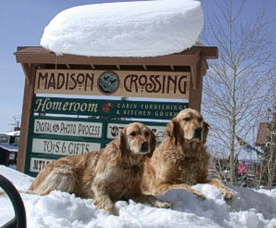 Madison Crossing Lounge: Our Golden Greeters
