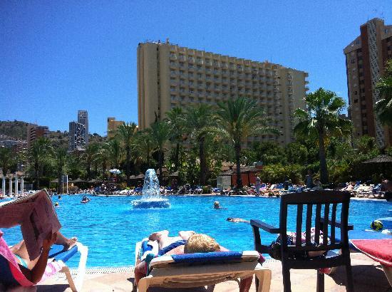 Pool inbetween hotels picture of sol pelicanos ocas - Hotels in alicante with swimming pool ...