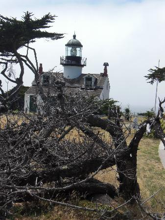 Sea Breeze Inn & Cottages: Oldest active lighthouse in CA?