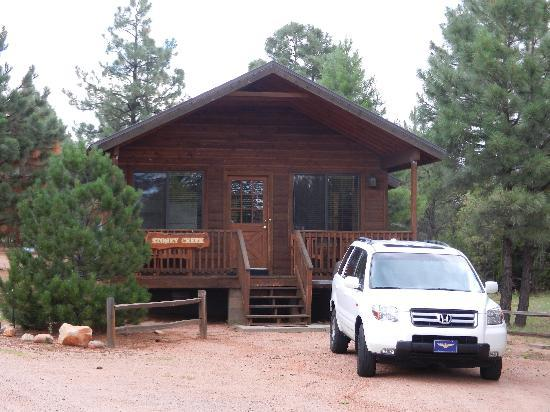 Mogollon Resort Cabins: The view from the road.
