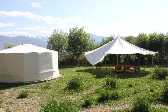 Ladakh Sarai: Sitting Area outside the Hut