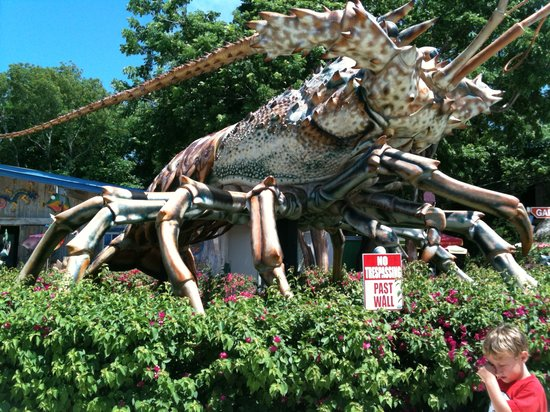 The Rain Barrel Artisan Village: Big spiny lobster is the best part of this place.