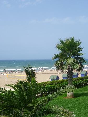 Sheraton Club des Pins Resort: jardin donnant sur la plage