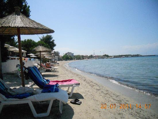 Socrates Plaza Hotel: The beach outside the hotel