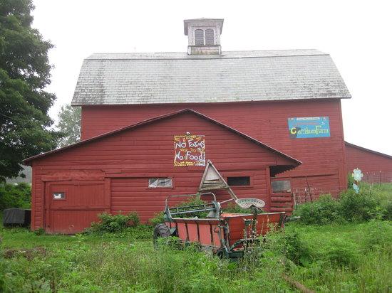 Poultney, Βερμόντ: GMC Cerridwen Farm