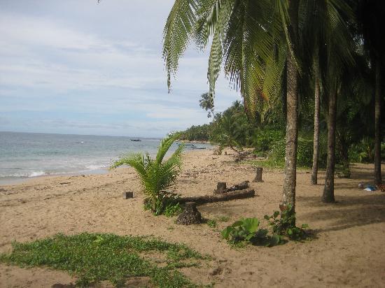 Hotel Blue Conga: Punta Uva