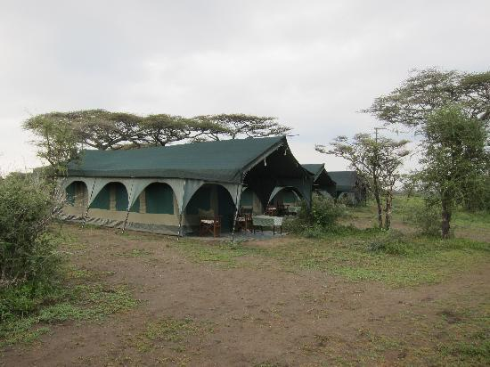 Kirurumu Tarangire Lodge: The main tent