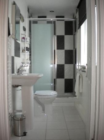 Orchard Lodge B&B: Huge shower!