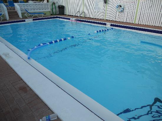 Beachview Cottages : Salt Water Pool