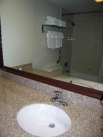 Comfort Inn Airport: Bathroom - large counter