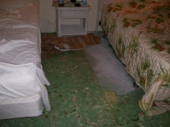 El Patio Motel: Area Of Tiles Missing In Between The Beds In Room #2