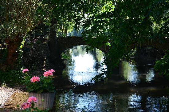 Le Moulin Fleuri: The river feeding the millpond