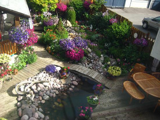 Austrian Haven Bed and Breakfast: Back garden