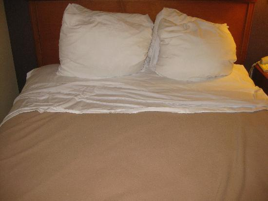 "Quality Suites San Diego SeaWorld Area: Under the covers ""made"""