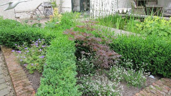 Absoluut Verhulst: the courtyard garden