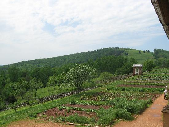 Hampton Inn Charlottesville: The vegetable gardens at Monticello