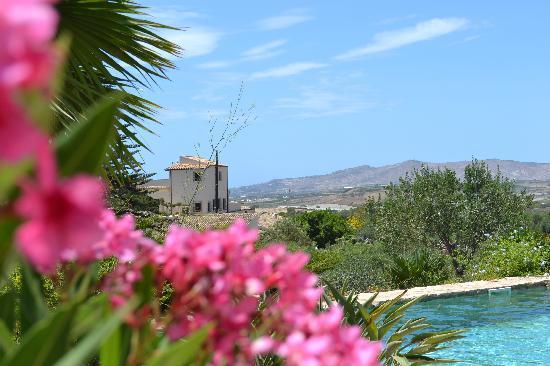 Mandranova / Villa La Robazza / Il Casello: la vista dalla piscina
