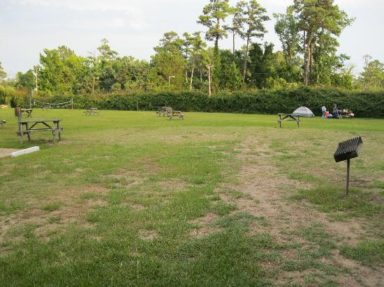 Adventure Bound Campground: Camping area