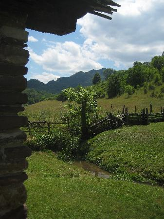 Historic Crab Orchard Museum: Lovely views at the museum