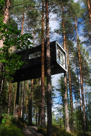 Treehotel: The Cabin