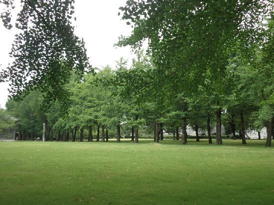 Mito, Japón: 芝生