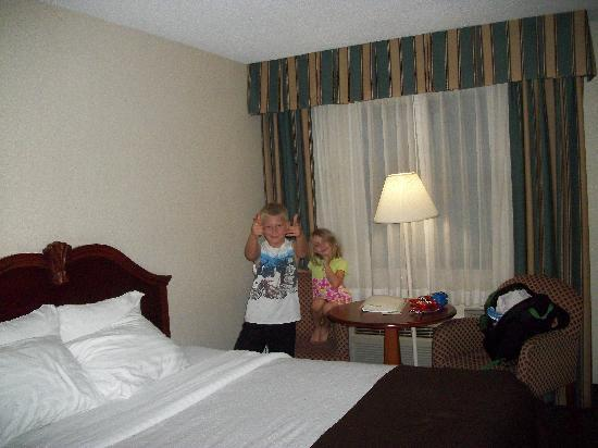 Holiday Inn Saint Louis West Six Flags : room photo