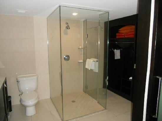 The Condado Plaza Hilton: Bathroom