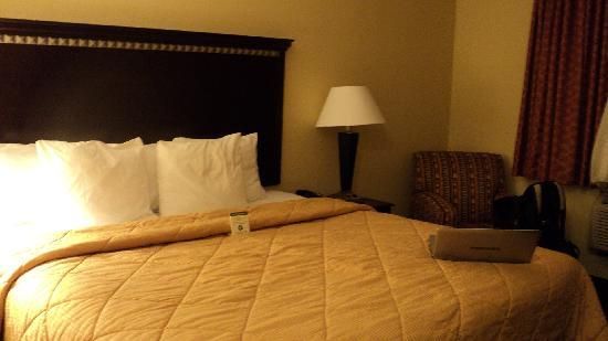 Comfort Inn & Suites Ozone Park: Basic but COMFY!