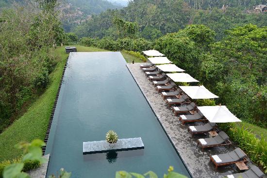 โรงแรมอลีลา อุบุด: Amazing pool with valley view