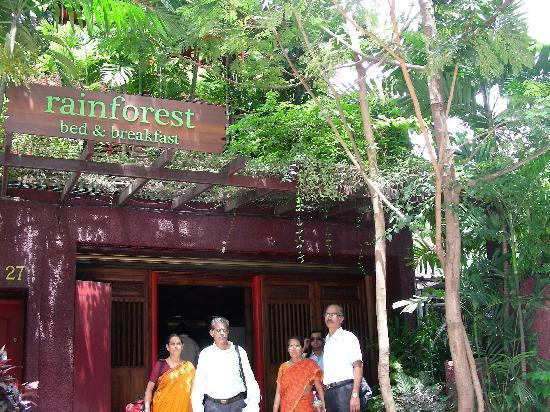 Rainforest Bed And Breakfast B Entrance