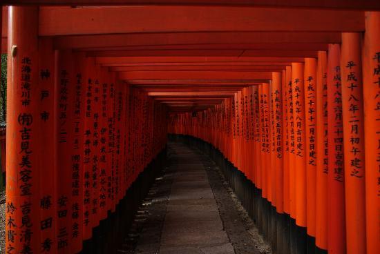ศาลเจ้าฟูชิมิ อินาริ: Endless Torii