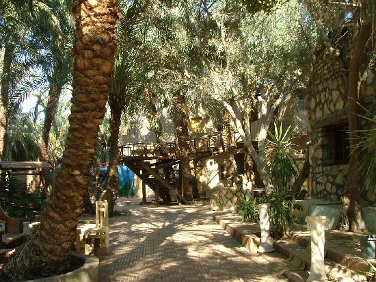 Old Oasis Hotel: Grounds