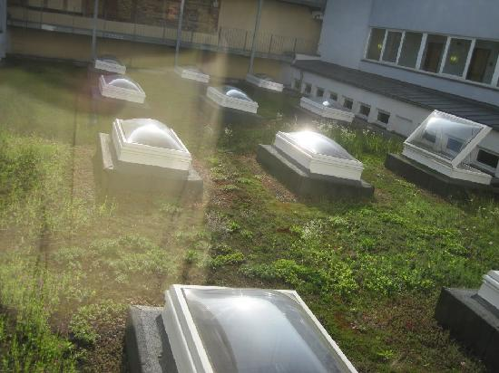 ACHAT Plaza Frankfurt/Offenbach: Courtyard- skylights or coffins?