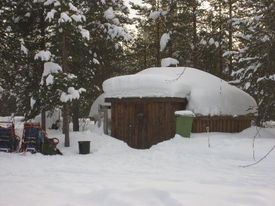 Hotel Arctic Eden: Our wilderness cabin care of Arctic Direct!!