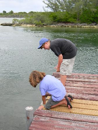 Love At First Sight Hotel: Kids trying their hand at fishing