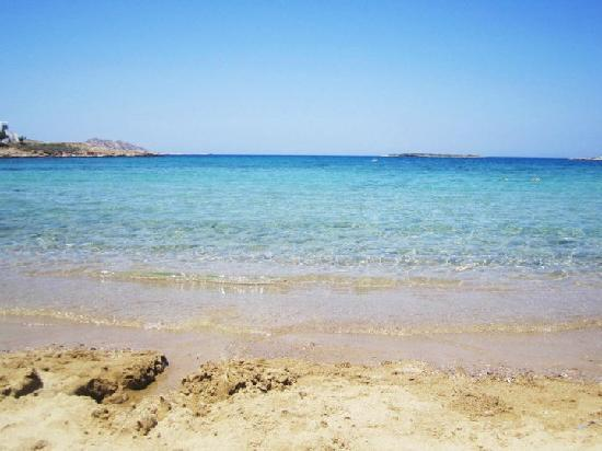 Young Inn Paros: clear waters on the beach